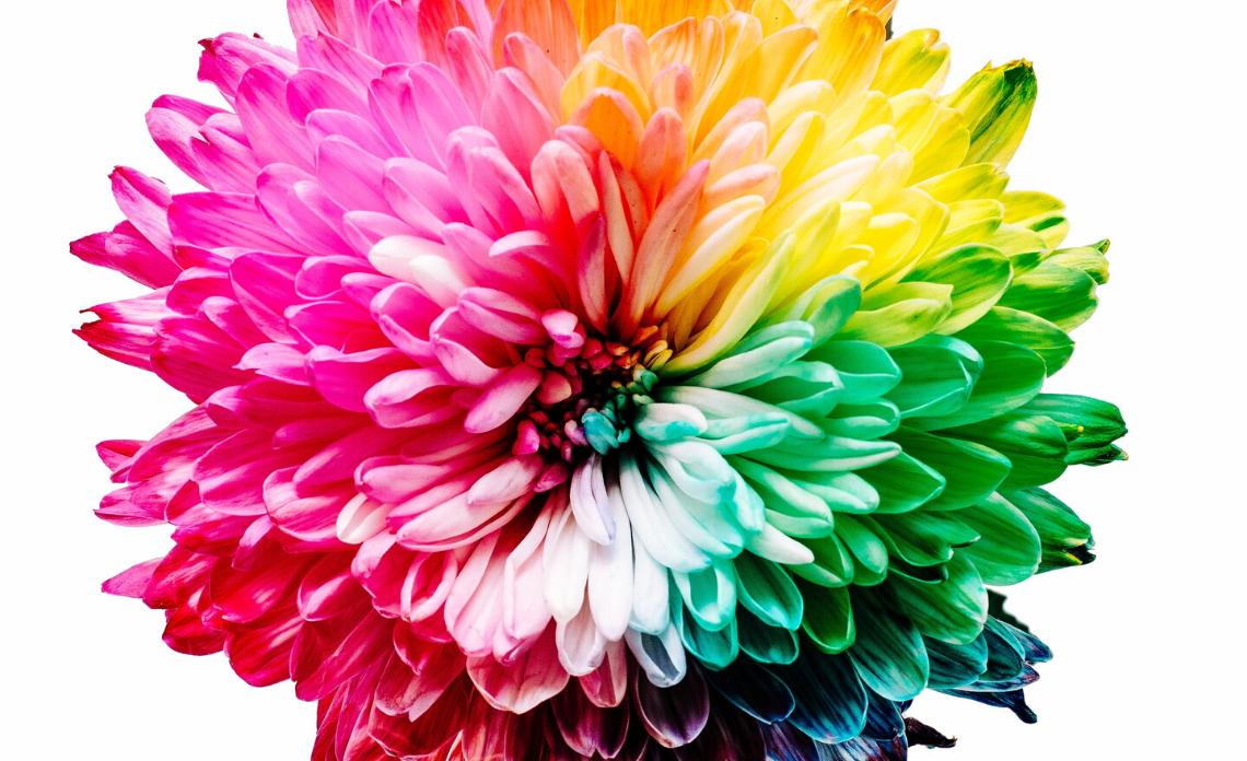 armocromia che colori scegliere per foulard fantasia da personalizzare